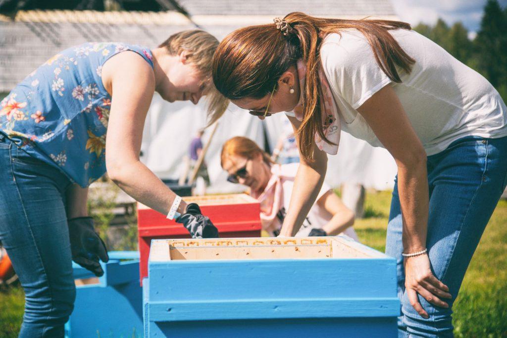 Teambuilding-Events in Estland